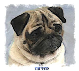 Welcome to Raevon and Edendale Pugs